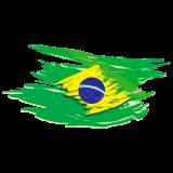http://www.tsvtransportes.com.br/wp-content/uploads/2018/09/adesivo-bandeira-do-brasil-estilosa-160x160.png